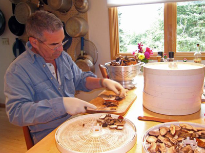 Slicing Boletes